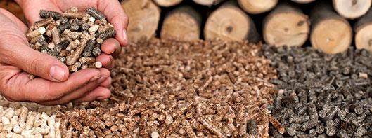Pellet Mill Palm Efb Press Wood Pellet Plant For Sale